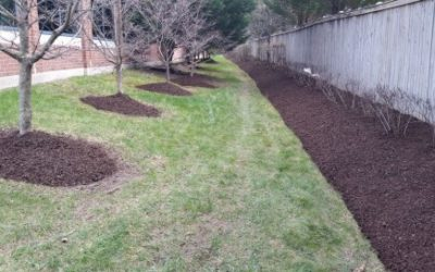 Benefits of Applying Mulch to Flowerbeds